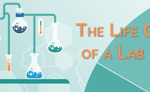 Life Cycle of a Lab Test header image